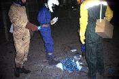 Cordà 2005