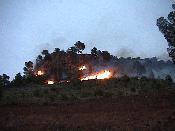 incendi a les faldes de la penya d'Alí-Maimó