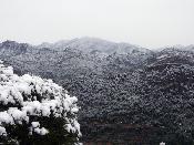 Muntanyes nevades