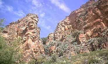 La Penya de Alí Maimó